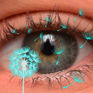 Алергии - защо се появяват и как се повлияват