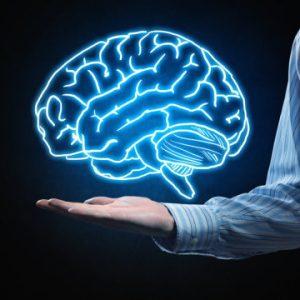 Учените откриха втори мозък, който контролира нашите емоции!!!